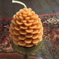 Maple Scented Pine Cone Candle