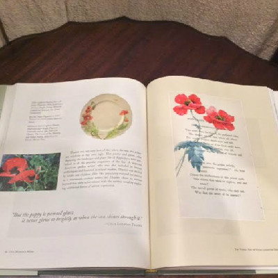 One Woman's Work: The Visual Art of Celia Laighton Thaxter by Sharon Paiva Stephan