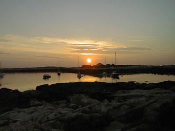 The Sunrise Never Failed Us Yet - Celia Thaxter
