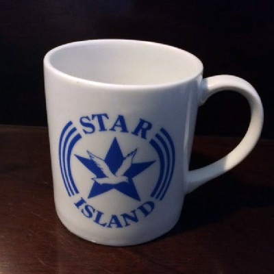 Star Island Mug - Seagull in Star - Isles of Shoals - 1990s