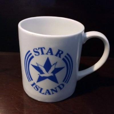 Star Island Mug - Seagull in Star - Isles of Shoals - 1990s