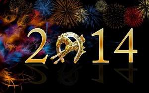 NEW Year  1545839_10201353928905487_1284327879_n