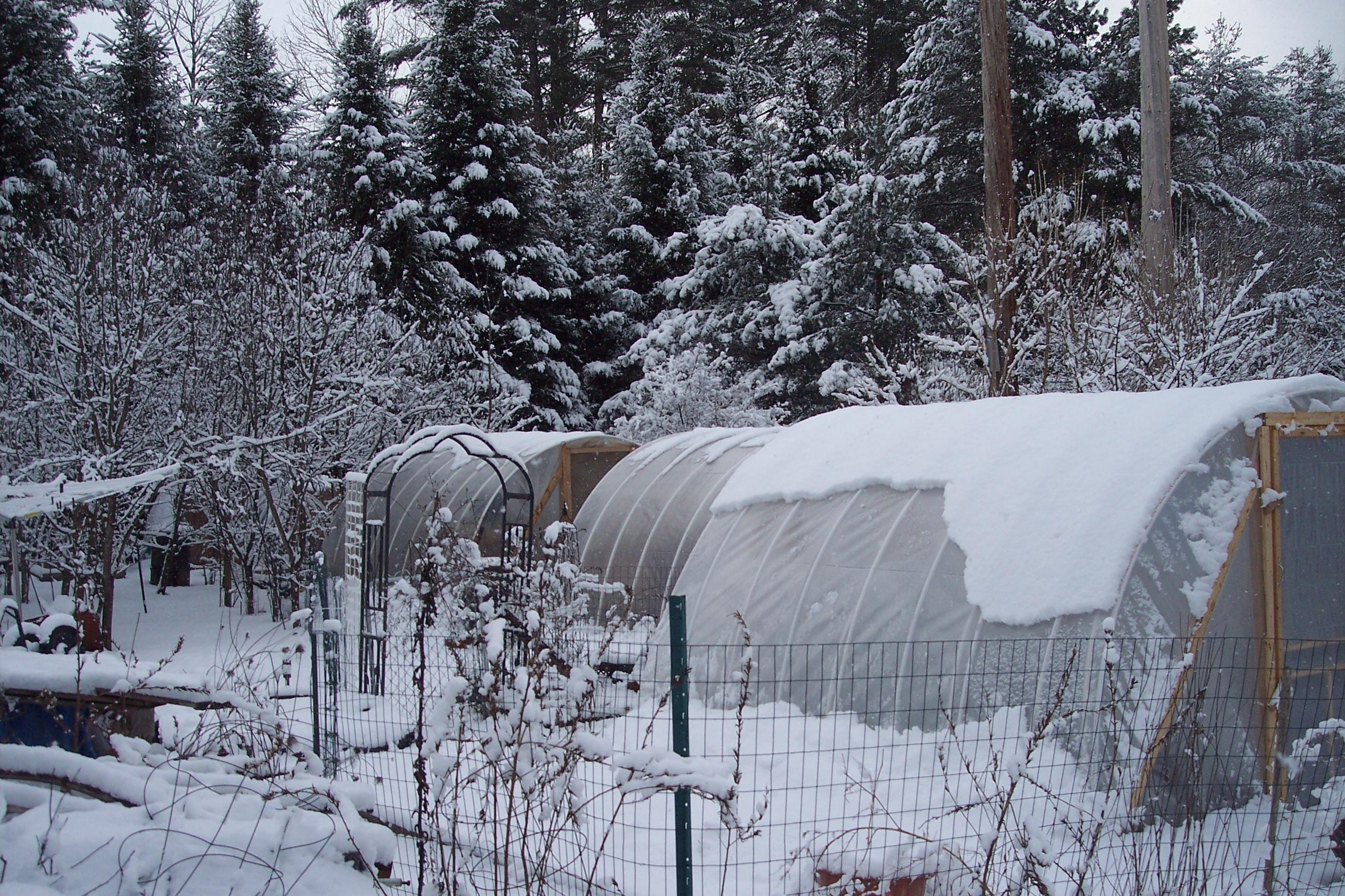 raised garden beds u2013 their evolution u2026 u2026 fayrehale farm gifts