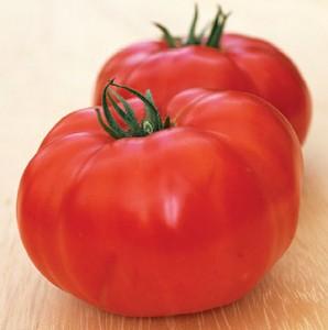 Tomato Chapman