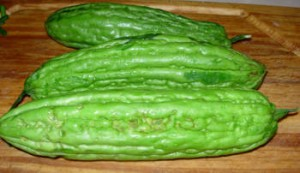bittermelonsbs1